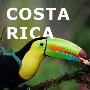 Costa Rica Viajes Bilbao Express