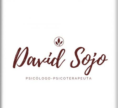 David Sojo psicólogo y psicoterapeuta - Bienestar Emocional Bilbao