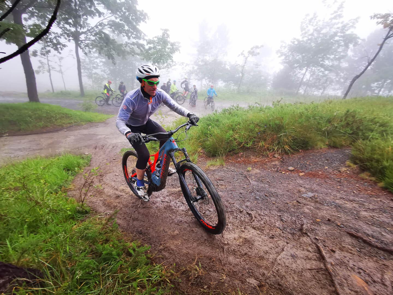 maestre bikes specialized