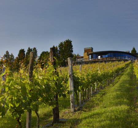Berroja Winery - Event Halls Bilbao