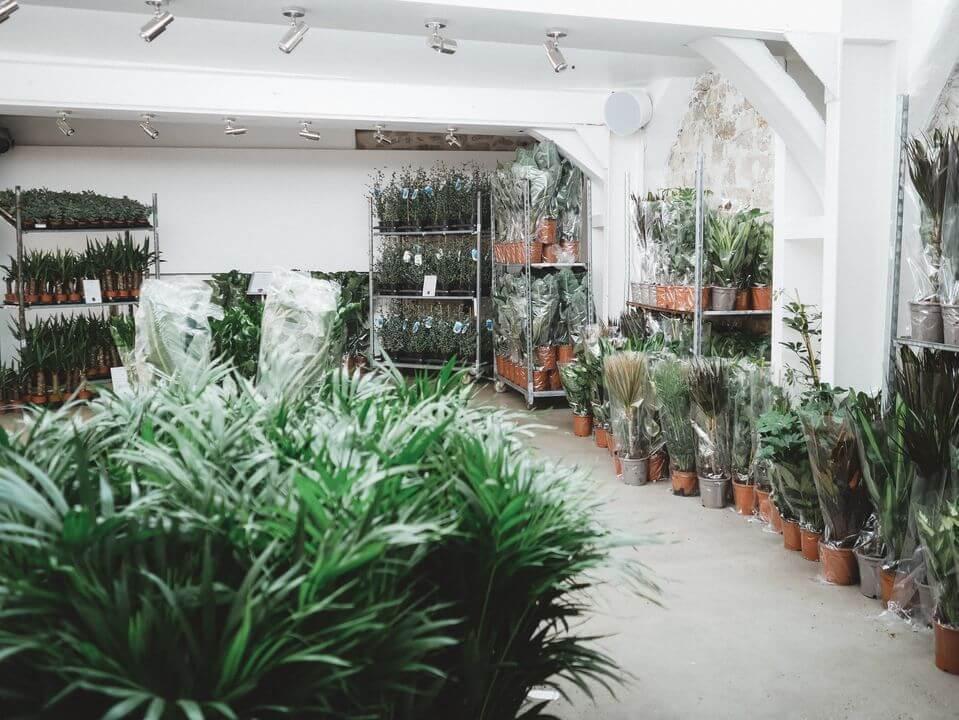 Visita el Jardín efímero de Maison Bouture en Bilbao